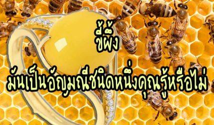 ขี้ผึ้ง มันเป็นอัญมณีชนิดหนึ่งคุณรู้หรือไม่